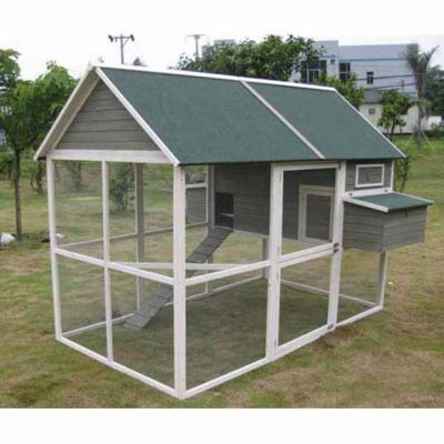 Innovation Pet Extra Large Green Walk In Coop Up To 15 Chickens Coop Chickens Extra Large