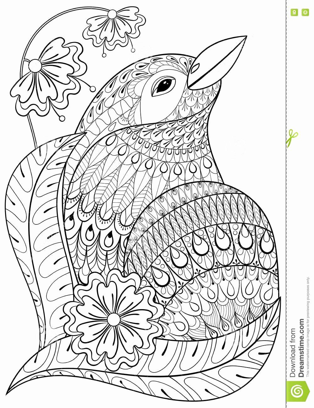 State Bird Coloring Page Awesome Free Bird Coloring Pages Kleuren Kleurplaten Zendoodle