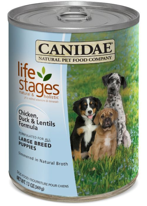 Canidae Life Stages Large Breed Puppy Can Dog Food 12/13oz