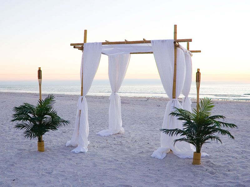 of Our Bamboo Canopy Arch in the Tampa Bay Florida Area Note Palm ...