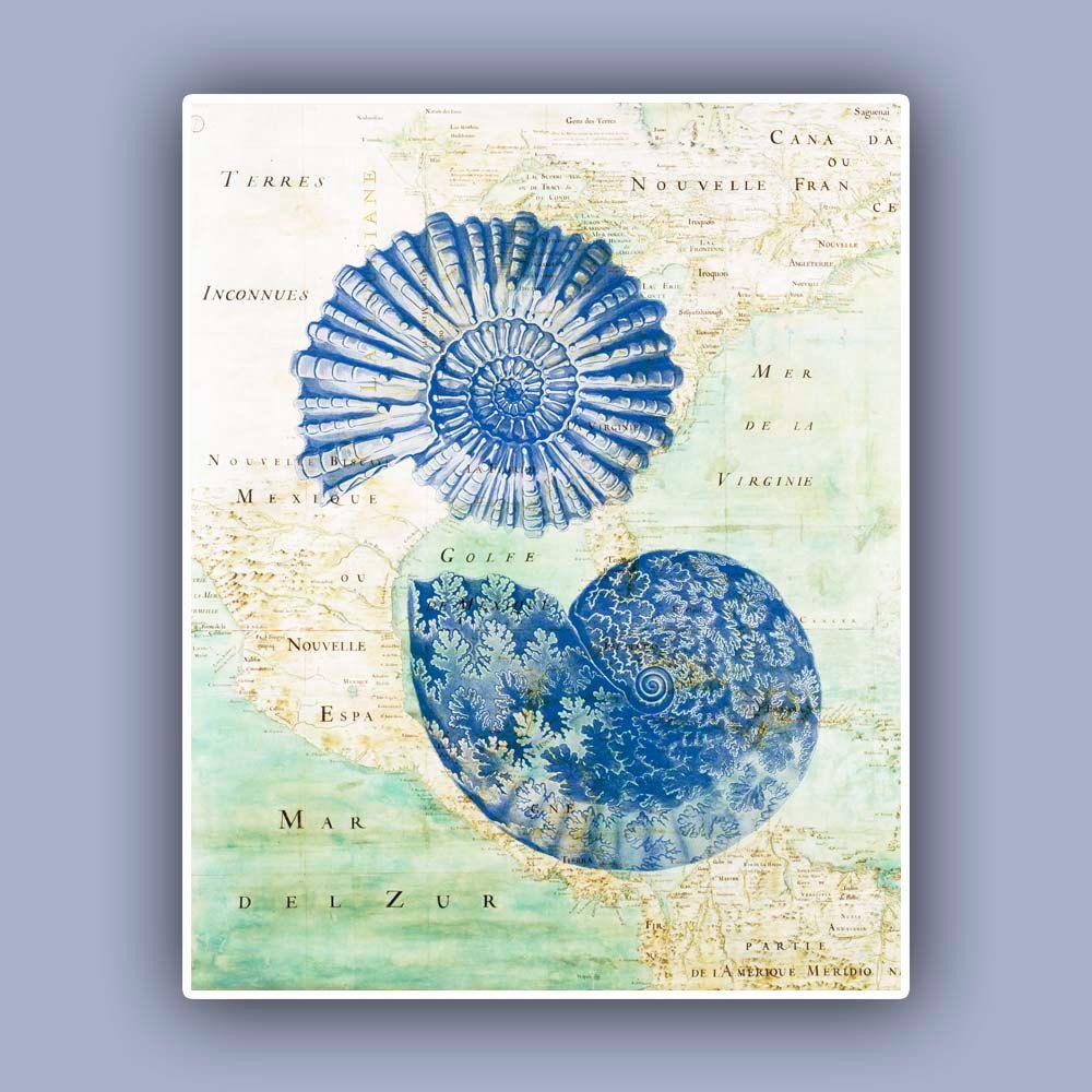 Ammonite Print In Blue Fossil Shell Blue Print Ammonite Fossil