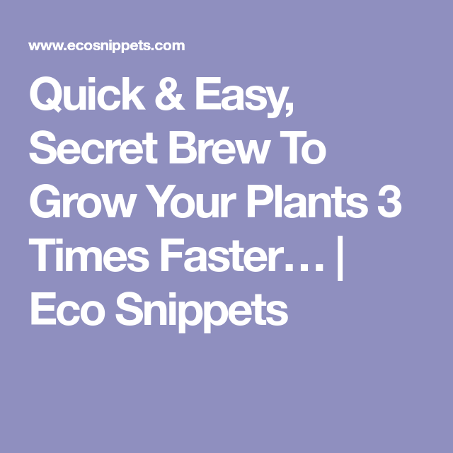 Summer Solutions For Pests Yard Work More: Quick & Easy, Secret Brew To Grow Your Plants 3 Times