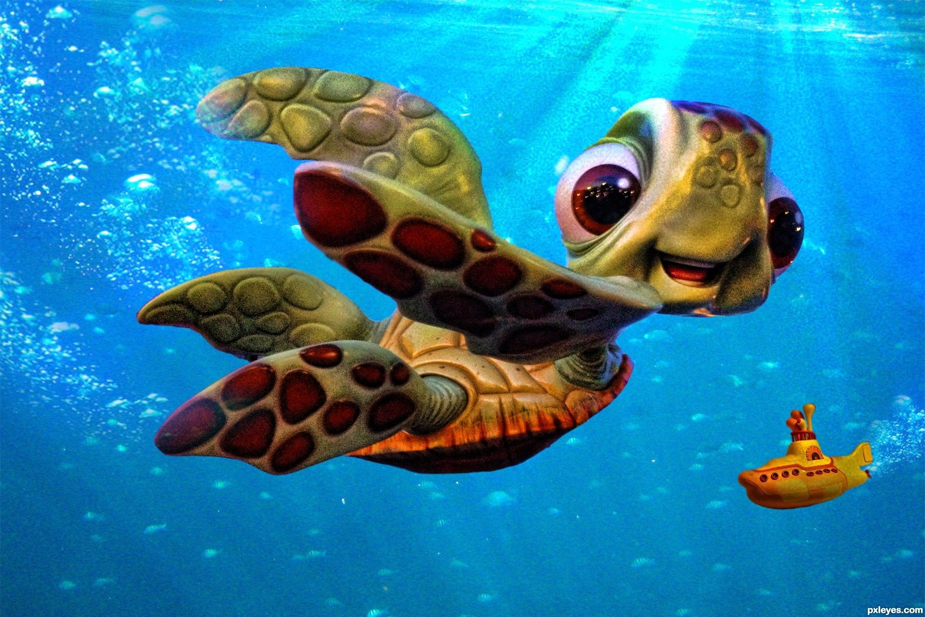finding nemo turtles meet