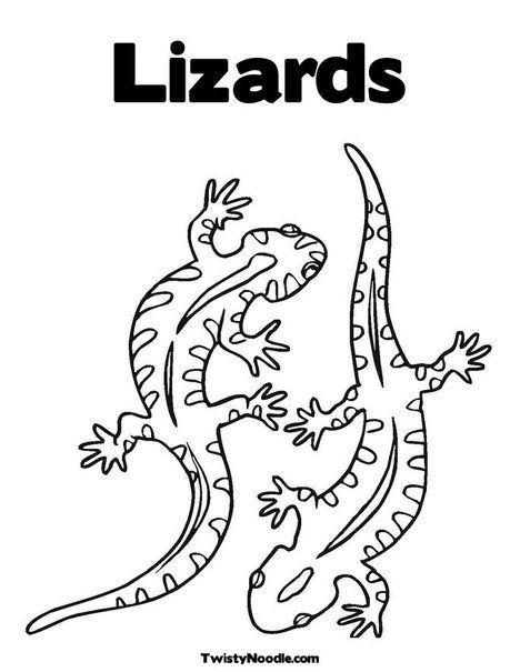 Lizards Coloring Page From Twistynoodle Com Lizard Animal