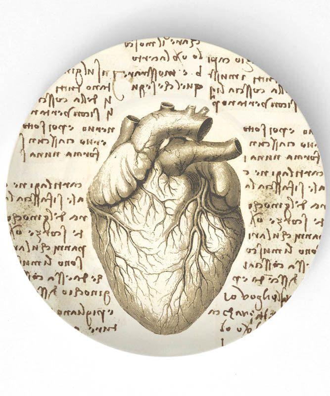 Da Vinci Anatomy Heart Image collections - human body anatomy