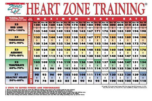Heart Rate Calories Burned
