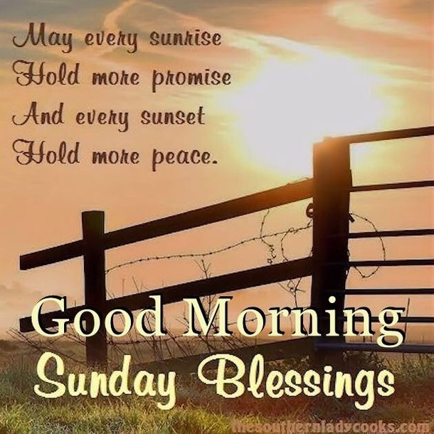 50 Best Happy Sunday Quotes To Share Good Morning Sunday Morning