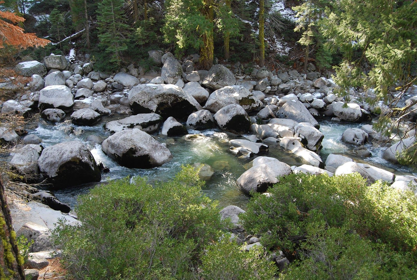 Mumzie's Country Place: Trout Fishing in the Sierra Snow - Outdoor ...