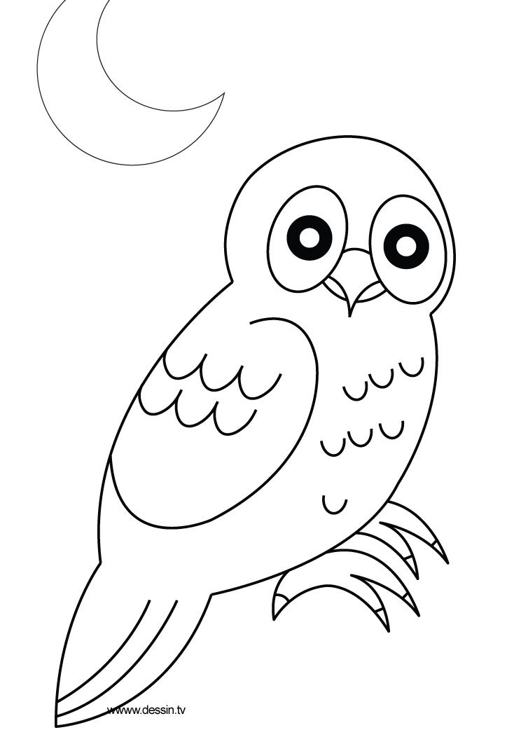 Owl Coloring Pages Coloring Owl Coloriage Chouette Coloriage