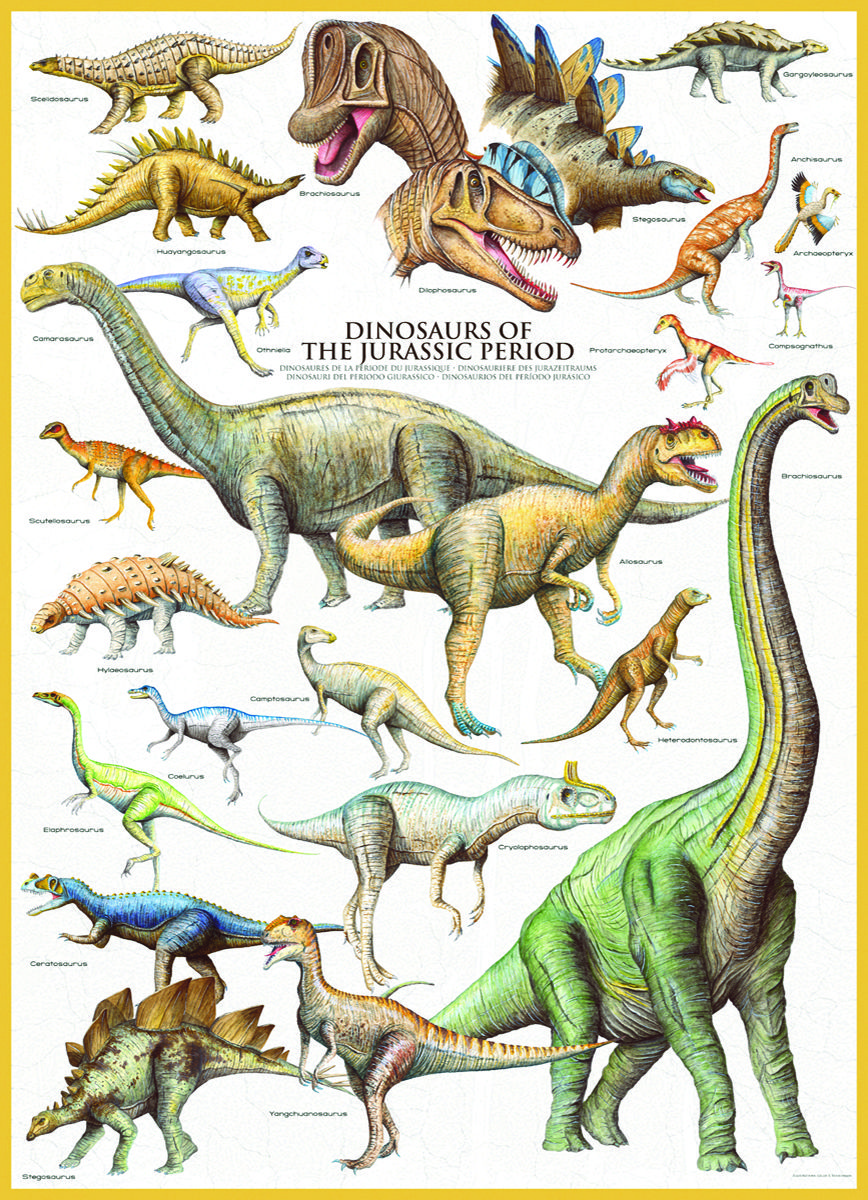 jurassic period Rather than the seven continents that cover earth's surface today, during the  jurassic period there was one single 'supercontinent', called.