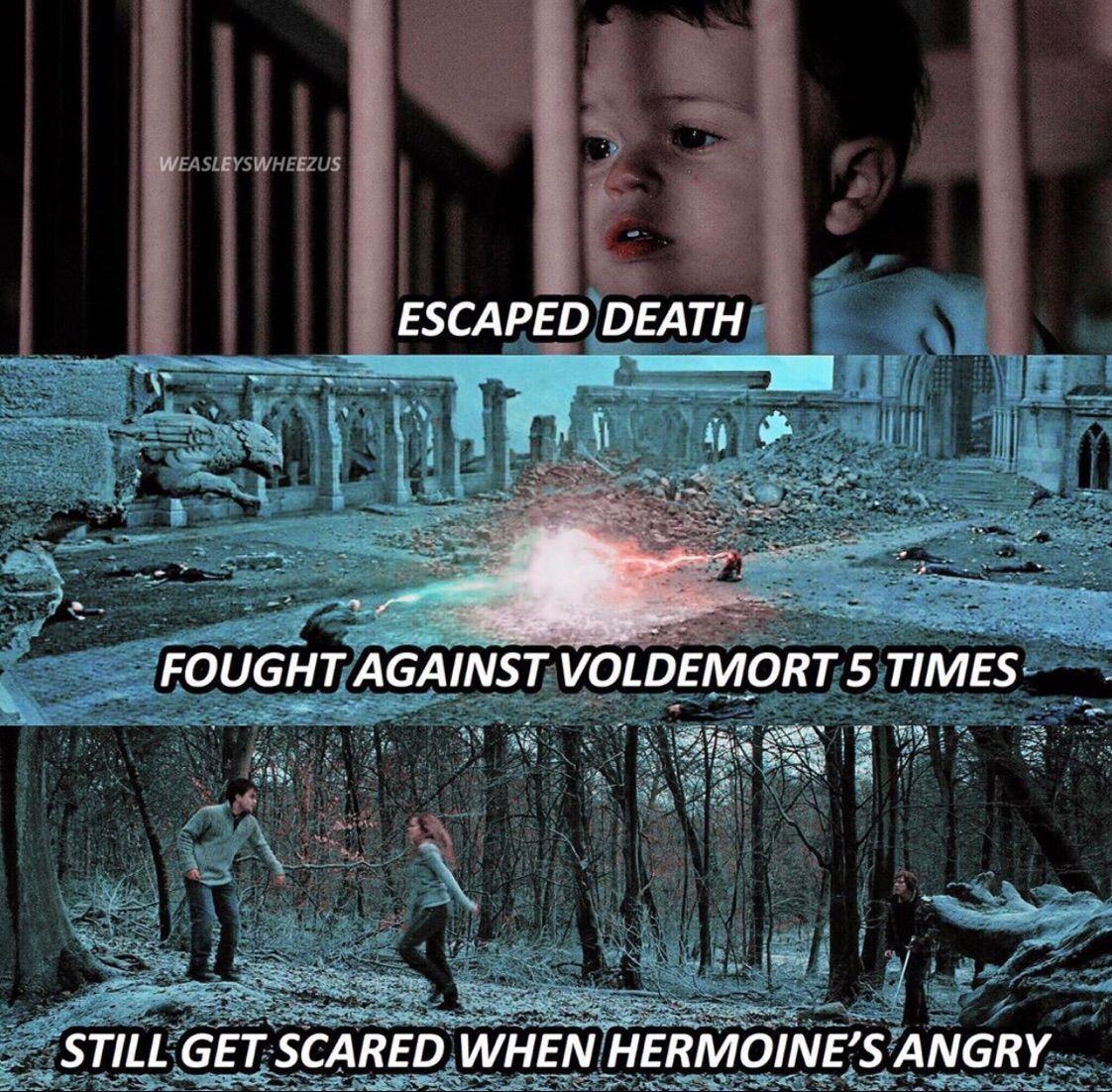 Mèmes Harry Potter 2