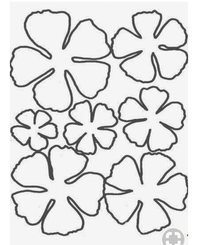 Pin by Magalie Sarnataro on Paper flowers / lanterns