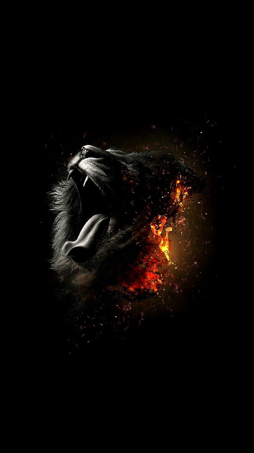 Dastroul Black Lion In 2019 Best Iphone Wallpapers