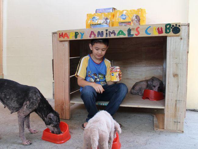Menino encontra forma de ajudar cães abandonados