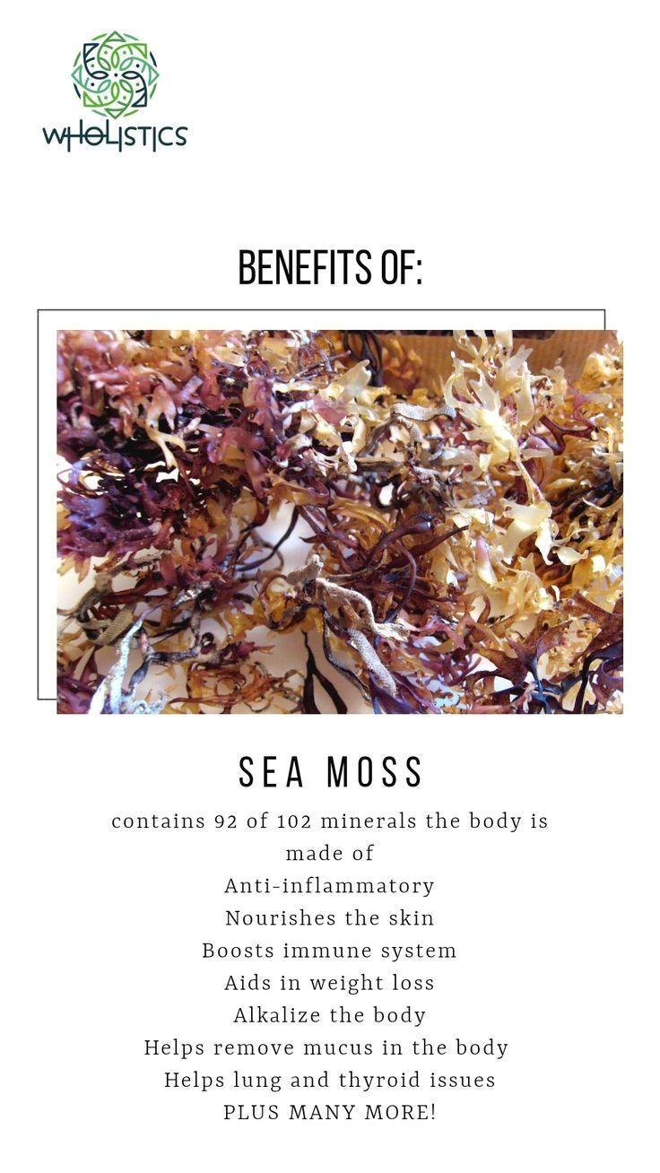 Pin by lacey on food in 2020 seamoss benefits sea moss