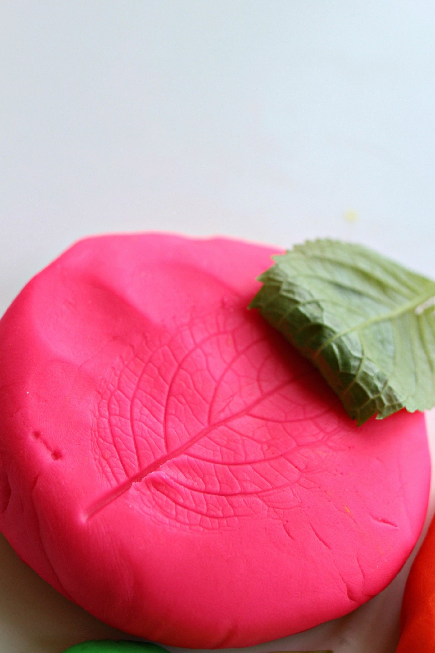 Nature prints – go on a nature hunt and come back and explore it by making prints on the Play-Doh compound//