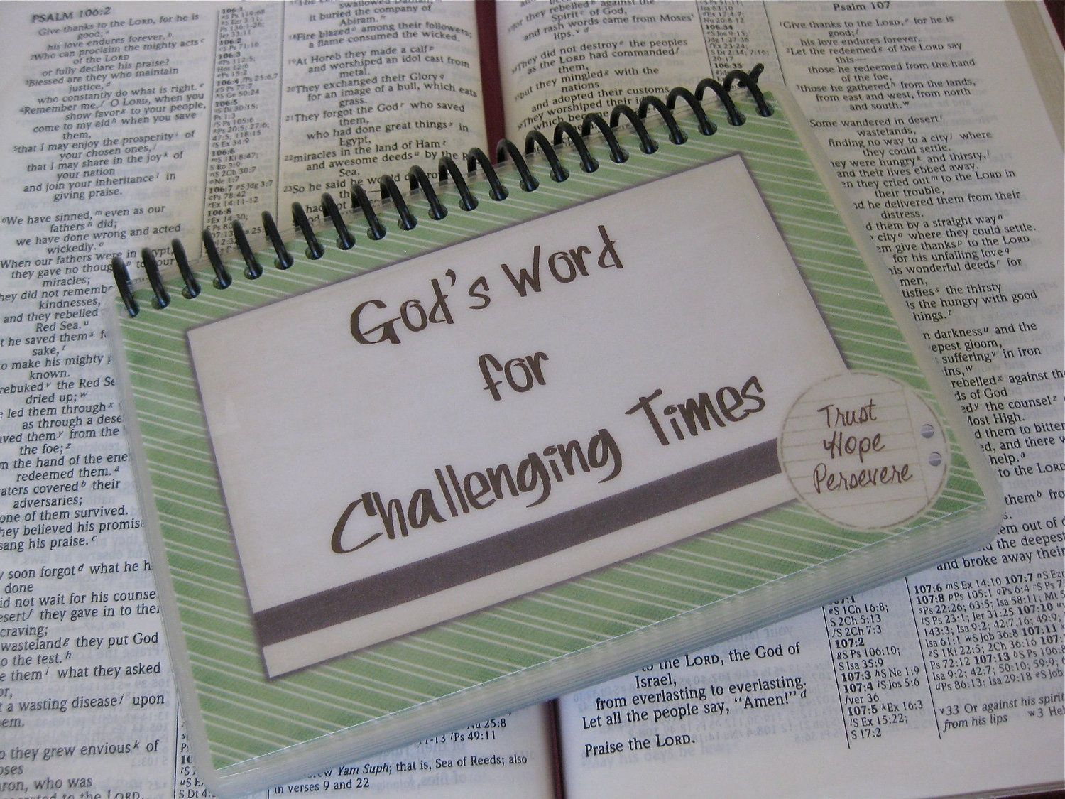 Laminated Bible Verse Cards God's Word for by ThroneOfGrace, $18.00