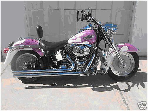 Harley Davidson Fatboy Custom Paint Jobs