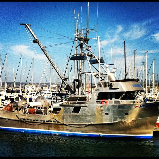 Checking out fishing boats in Monterey, CA.