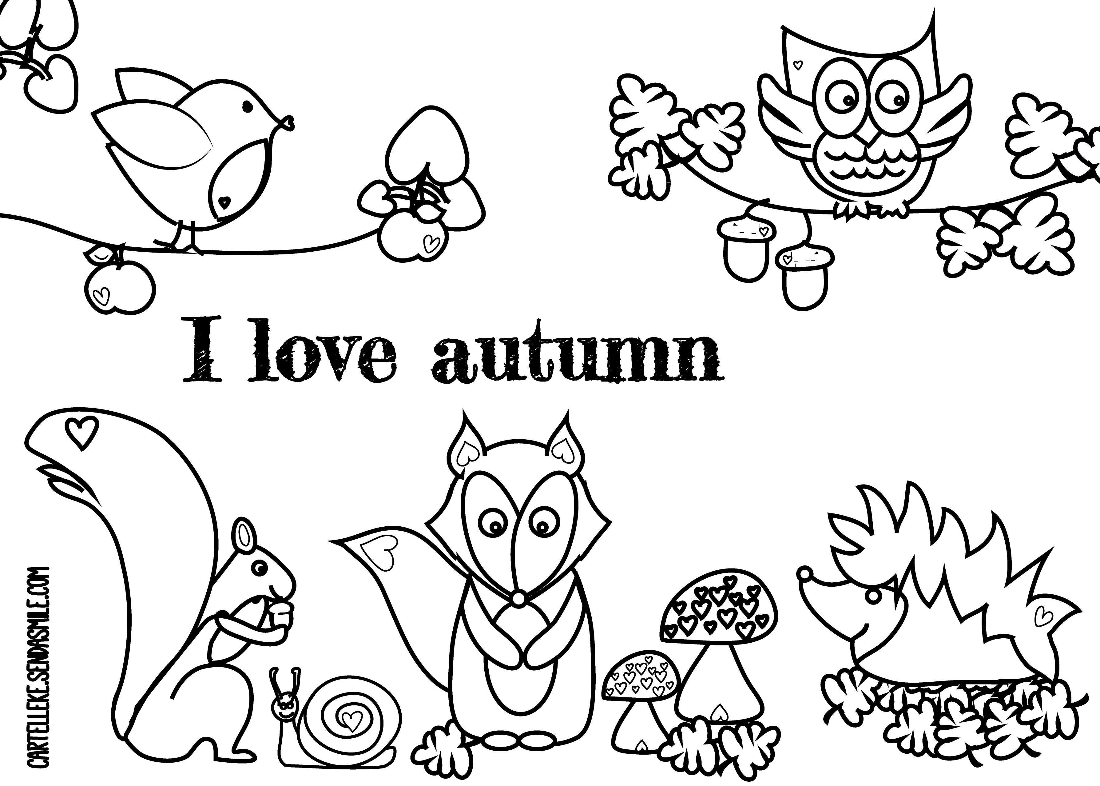 Herfst Kleurplaat Google Zoeken Autumn Autumn Crafts For Kids