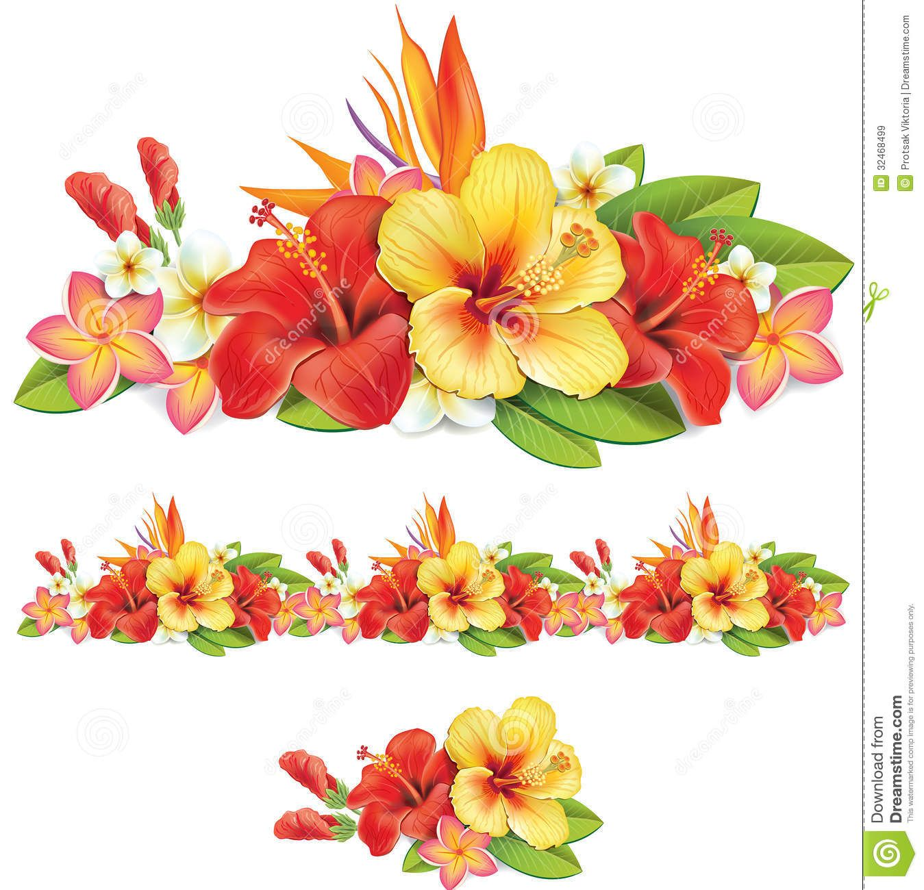 Garland Of Tropical Flowers Royalty Free Stock Images Image Tropical Flowers Hibiscus Flowers Hibiscus