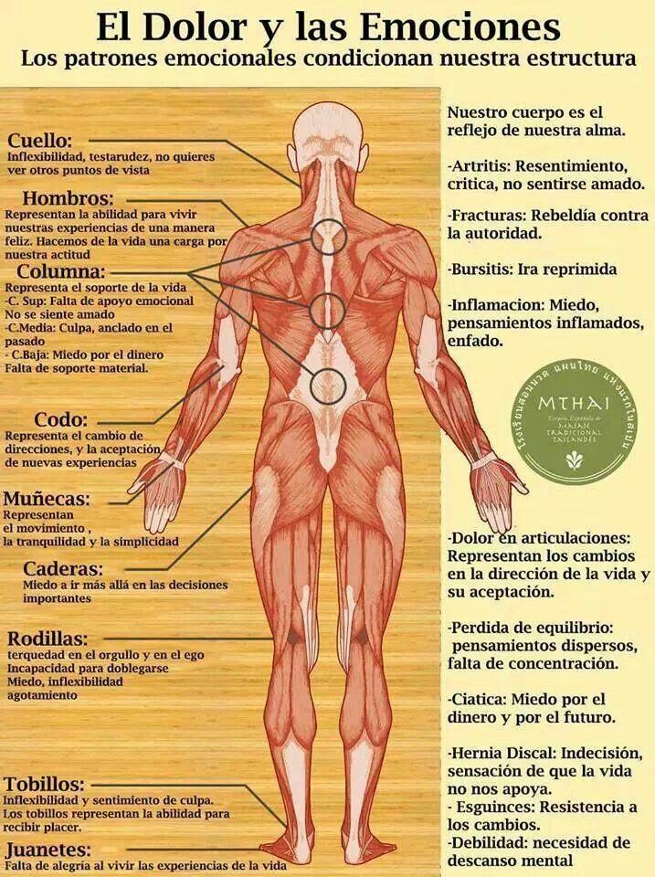 Pin de MARIA ANTONIA en Sabias.....   Pinterest   Consejos, Salud y ...