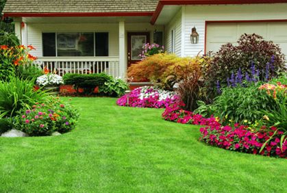 Simple Shrubs And Bushes For Landscaping Pictures Design Ideas Between  Landing Pad U0026 House   Curved