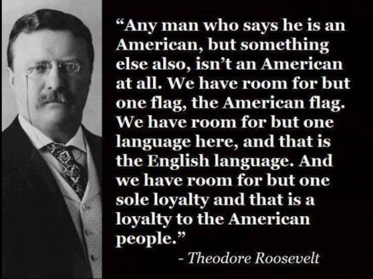 Illegal Aliens HATE This Teddy Roosevelt Quote And For GOOD Custom Teddy Roosevelt Quotes