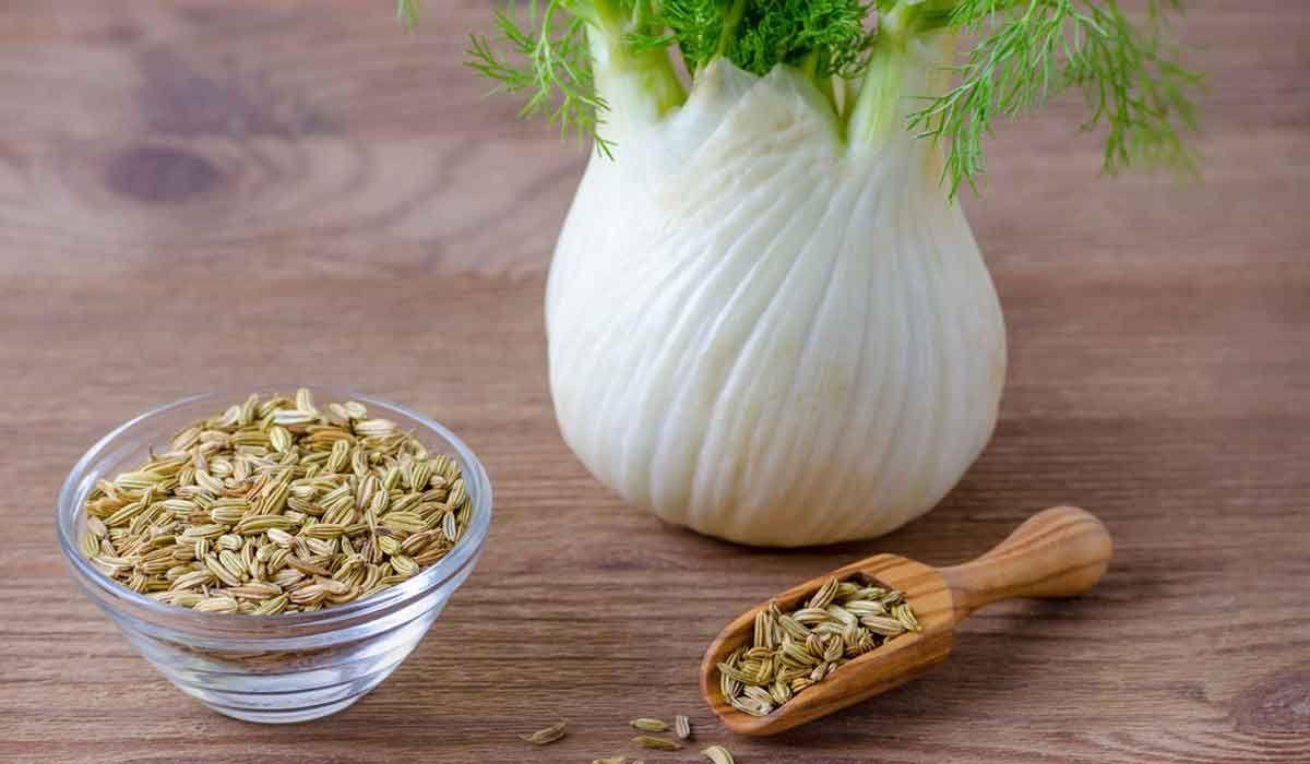 فوائد الشمر للهرمونات تعرفي عليها معنا Vegetables Food Garlic