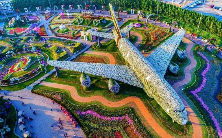 مواعيد ورسوم دخول حديقة الزهور دبي 2020 Miracle Garden Million Flowers Flower Garden