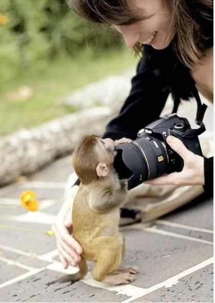 give me the camera!