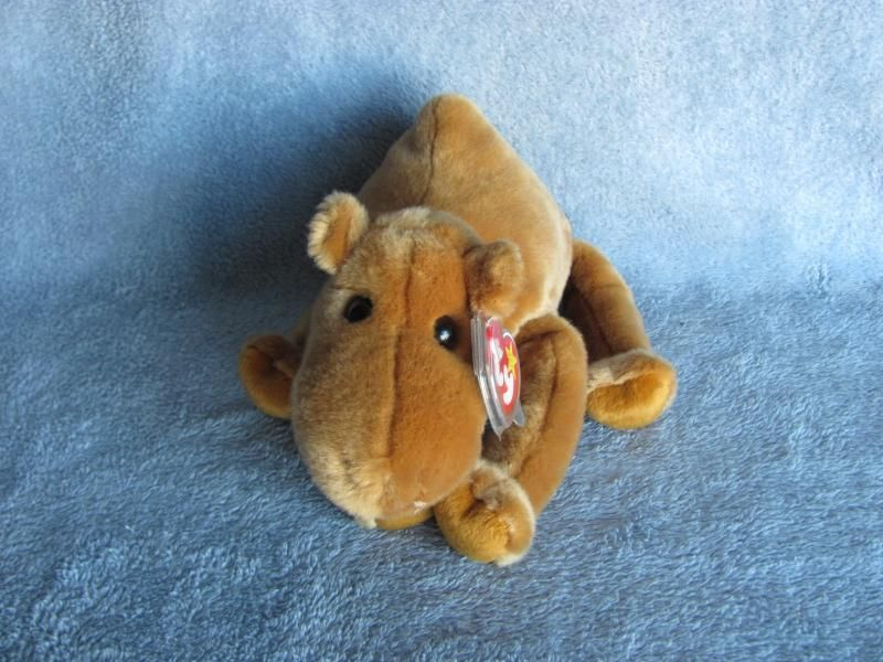 Ty Beanie Buddies Buddy Humphrey the Camel Retired  Bonanza  7.20 4ecd8938aa6