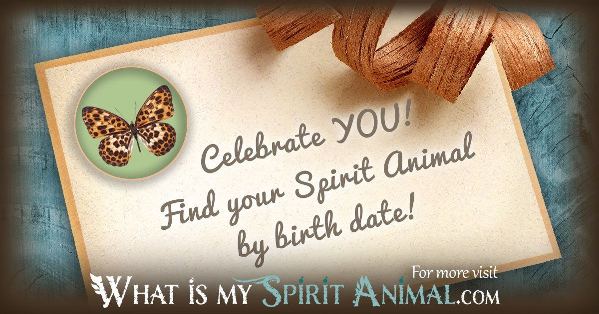 What Is My Spirit Animal by Birthday Zodiac Animals