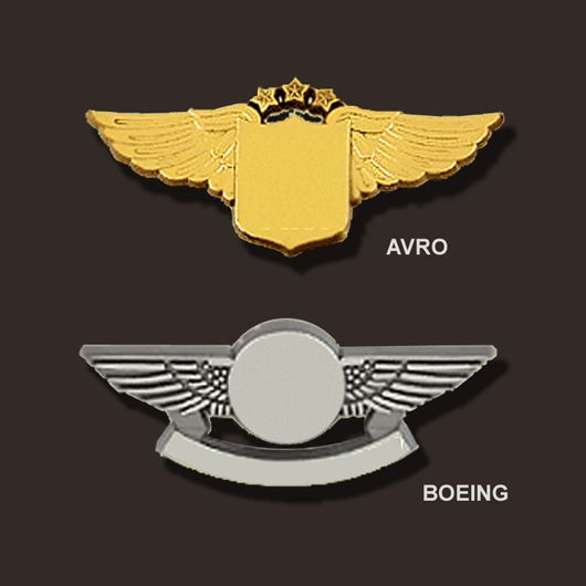 By the bag: bulk plastic pilot wings pins  From www pilot