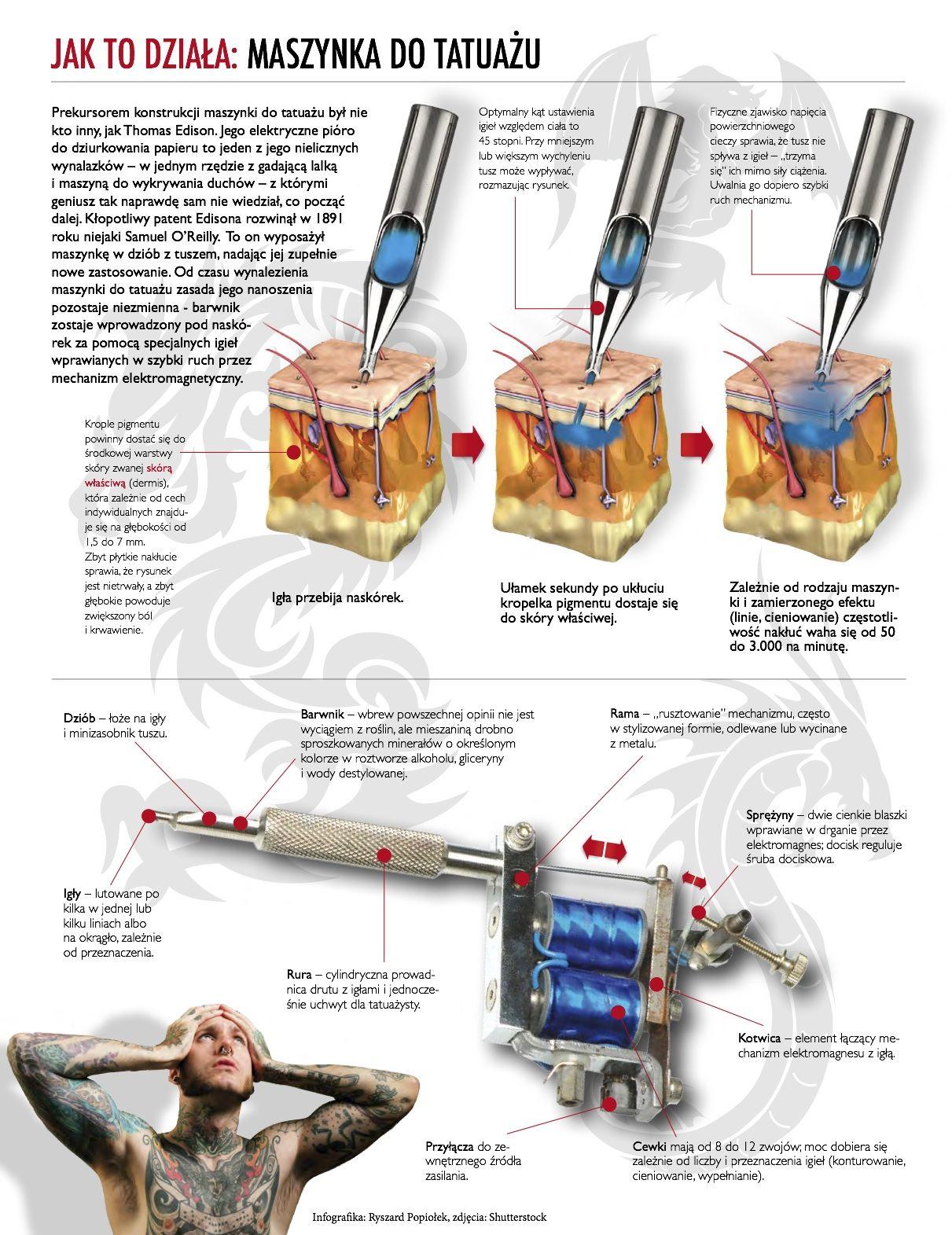 Infographics: how do tattoo machines work. Anatomy of a tattoo ...