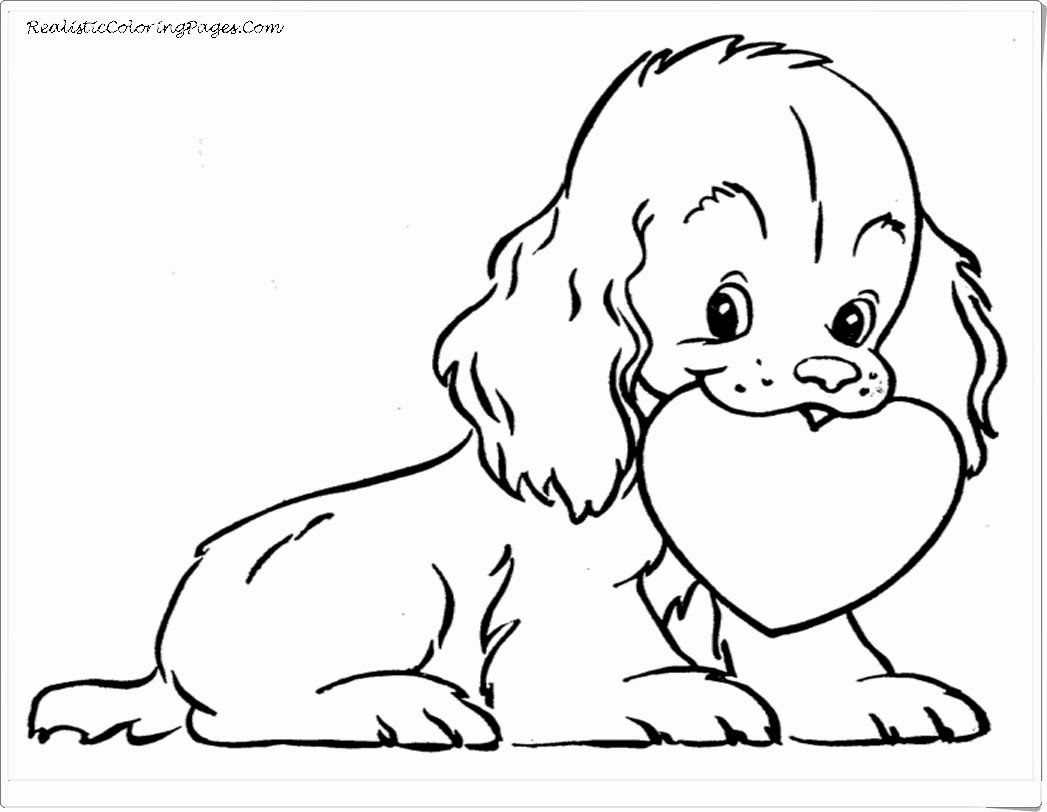 Real Animal Coloring Pages In 2020 With Images Puppy Coloring