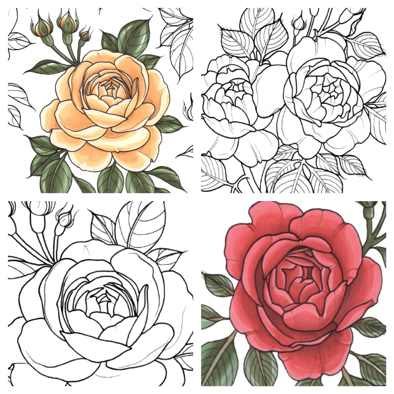 Rose Coloring Pages Printable Hearts And Roses Color