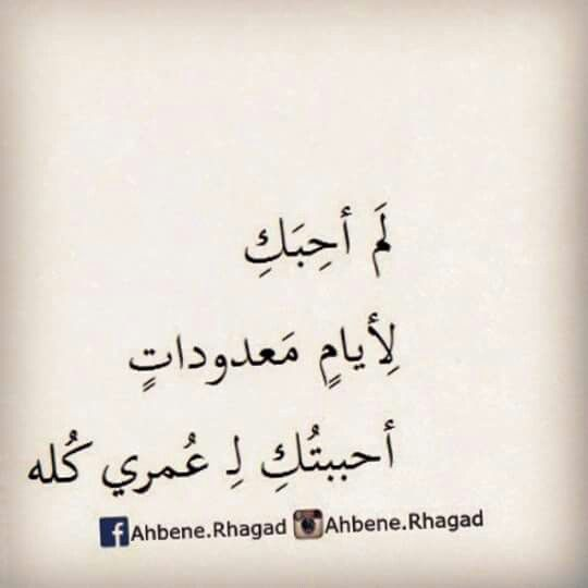 احببتك وسابقى طول العمر Love Words Words Quotes