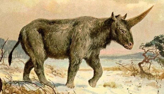 This painting by Heinrich Harder depicts the Siberian unicorn (Source: Heinrich Harder/Wikimedia Commons)