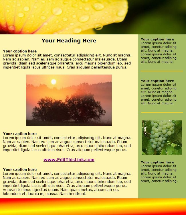 interesting newsletters Fun Newsletter Templates Free - newsletter templates free word