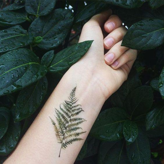 Watercolor realistic fern tattoo on the left inner wrist – New Ideas