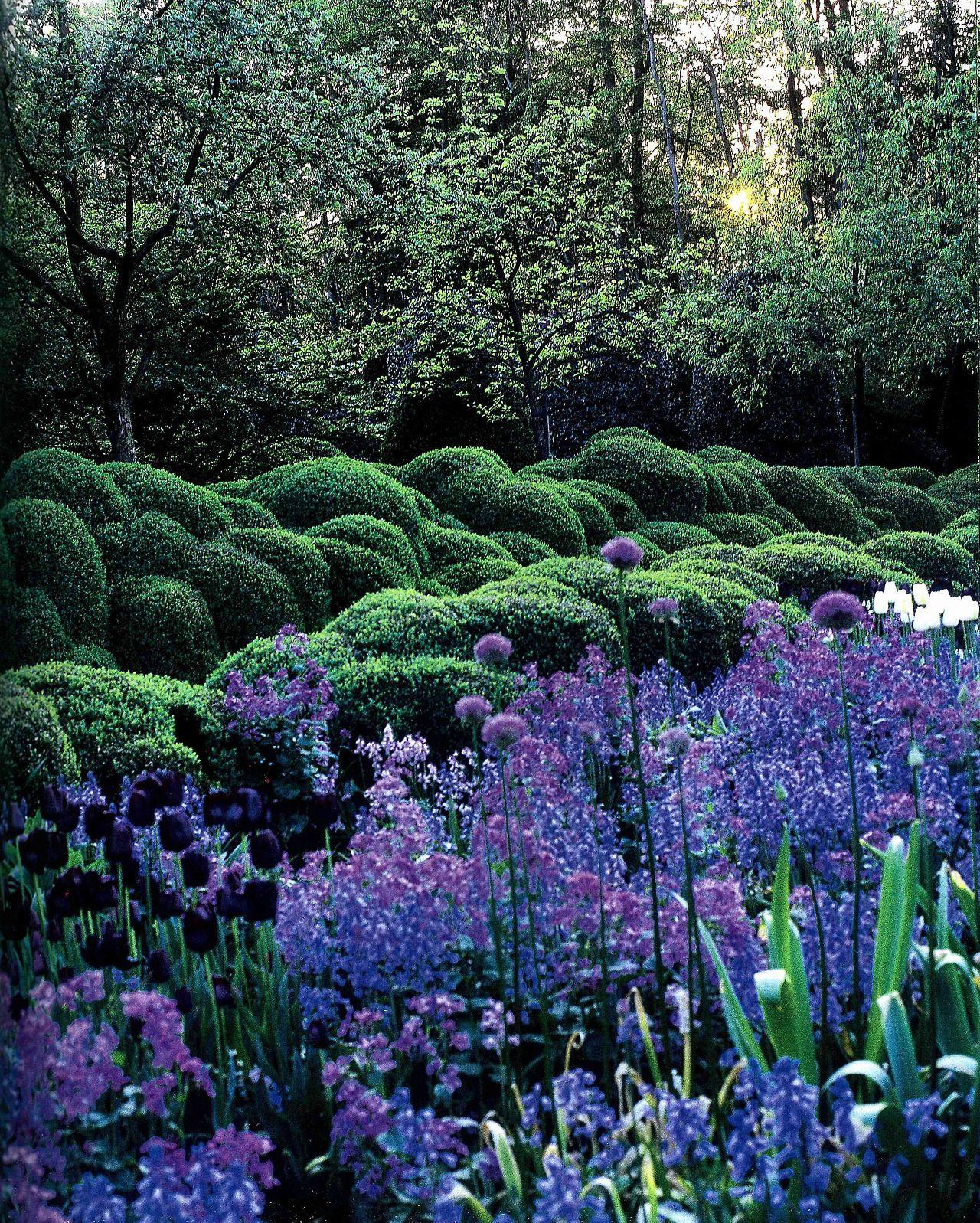 Landscape flower garden  Jacques Wirtz Private Garden  Neó  I Maestri  Pinterest