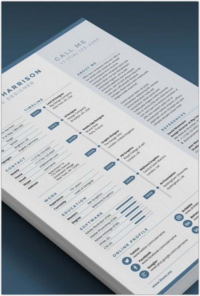 Best Professional Resume Templates Collection  Template