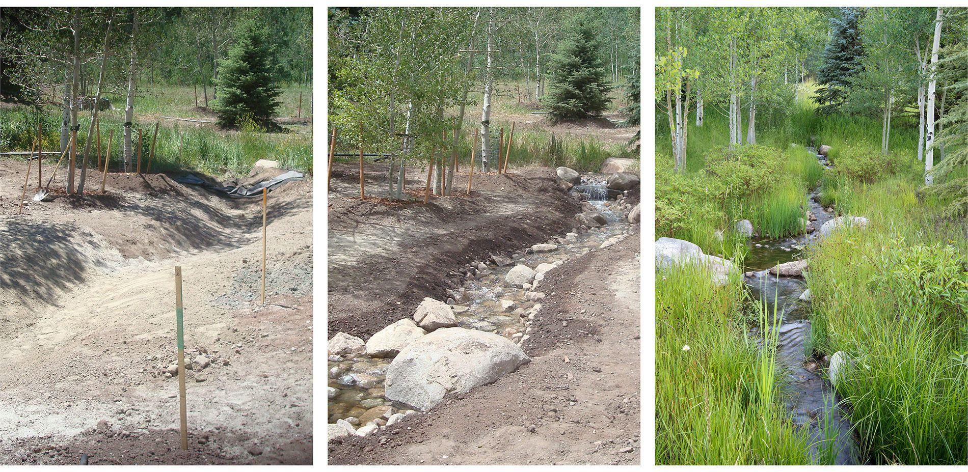 Naturalized Riparian Zone Before During And After Development Landscape Landscape Architecture Landscape Architect