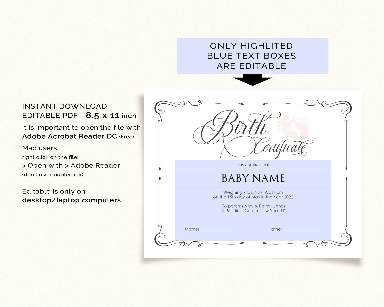 Charleston S Summer Morning Birth Certificate Licht