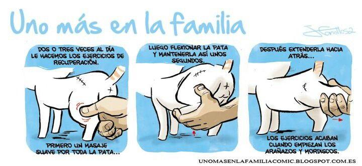 Conociendo a Toñin #UnoMasEnLaFamilia de @JoseFonollosa #comic #fb