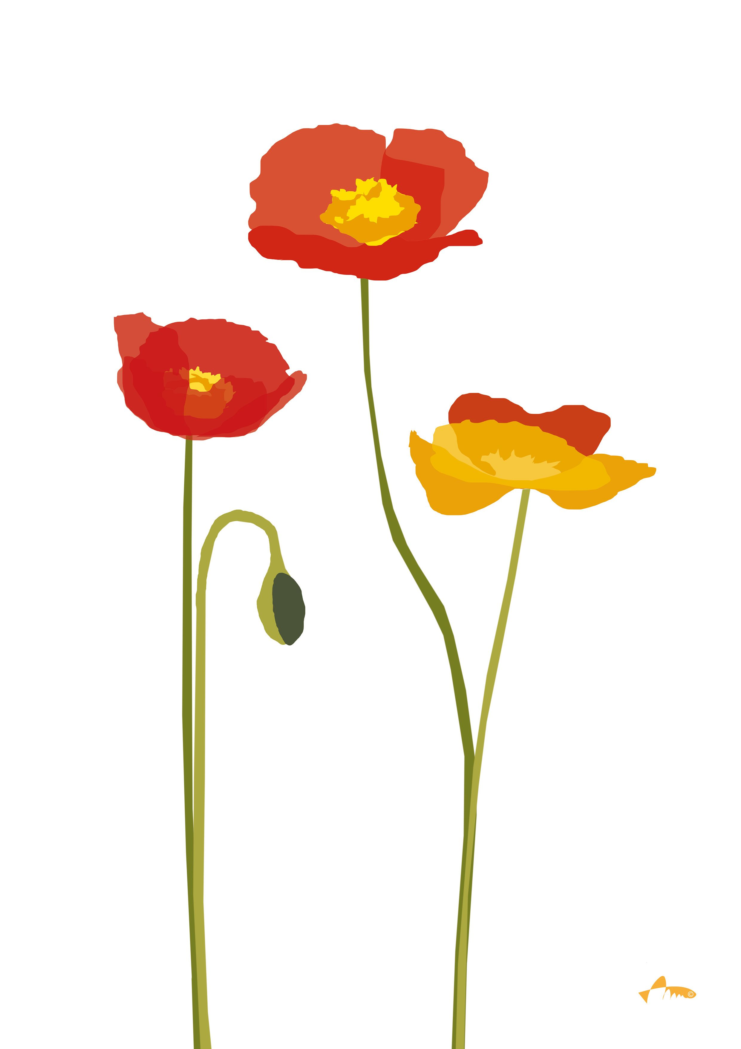 Poppies Clipart Style Cartoon Simple Graphic Expression