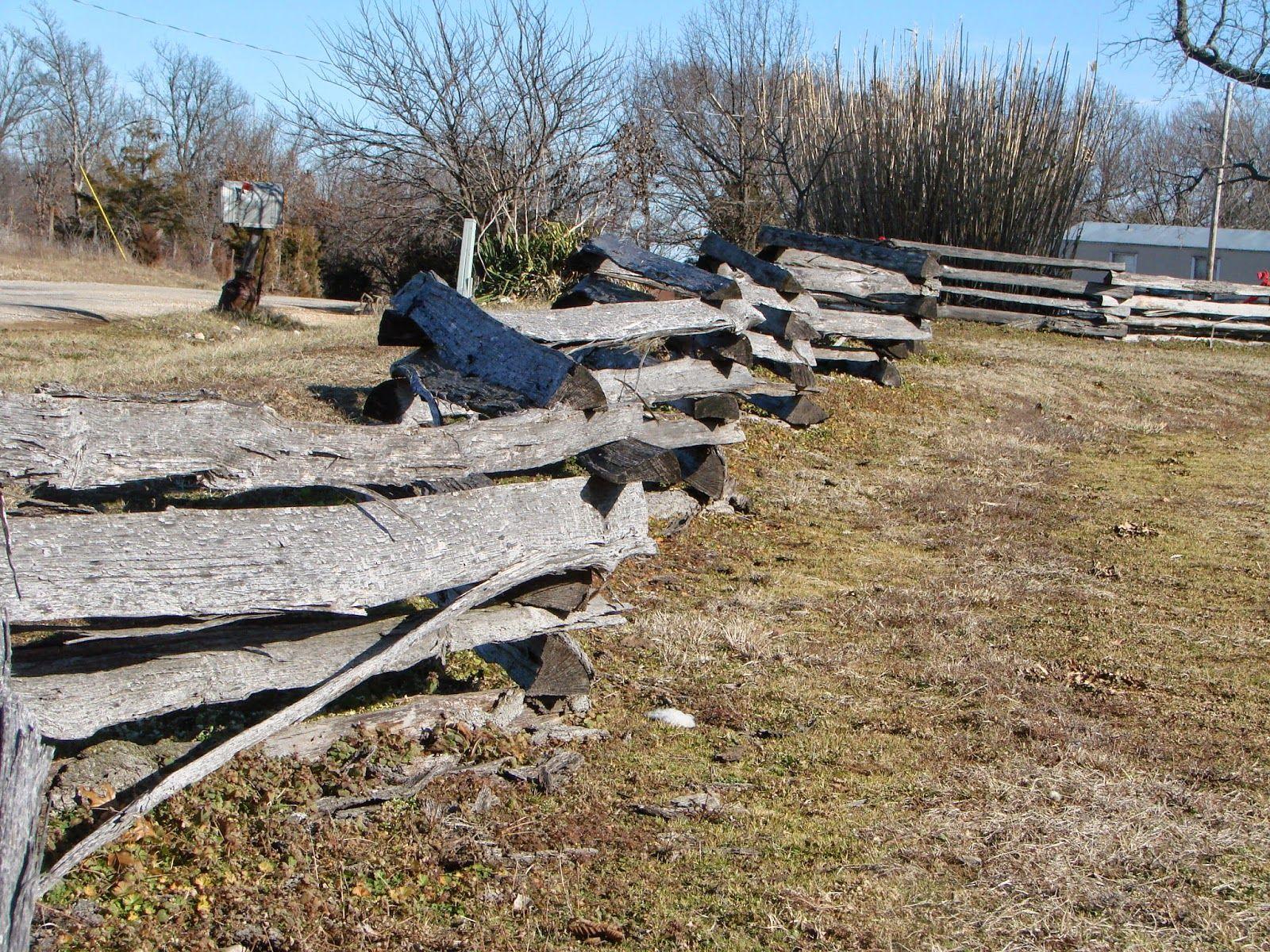 Modern Missouri Pioneers: A tour around the Farm