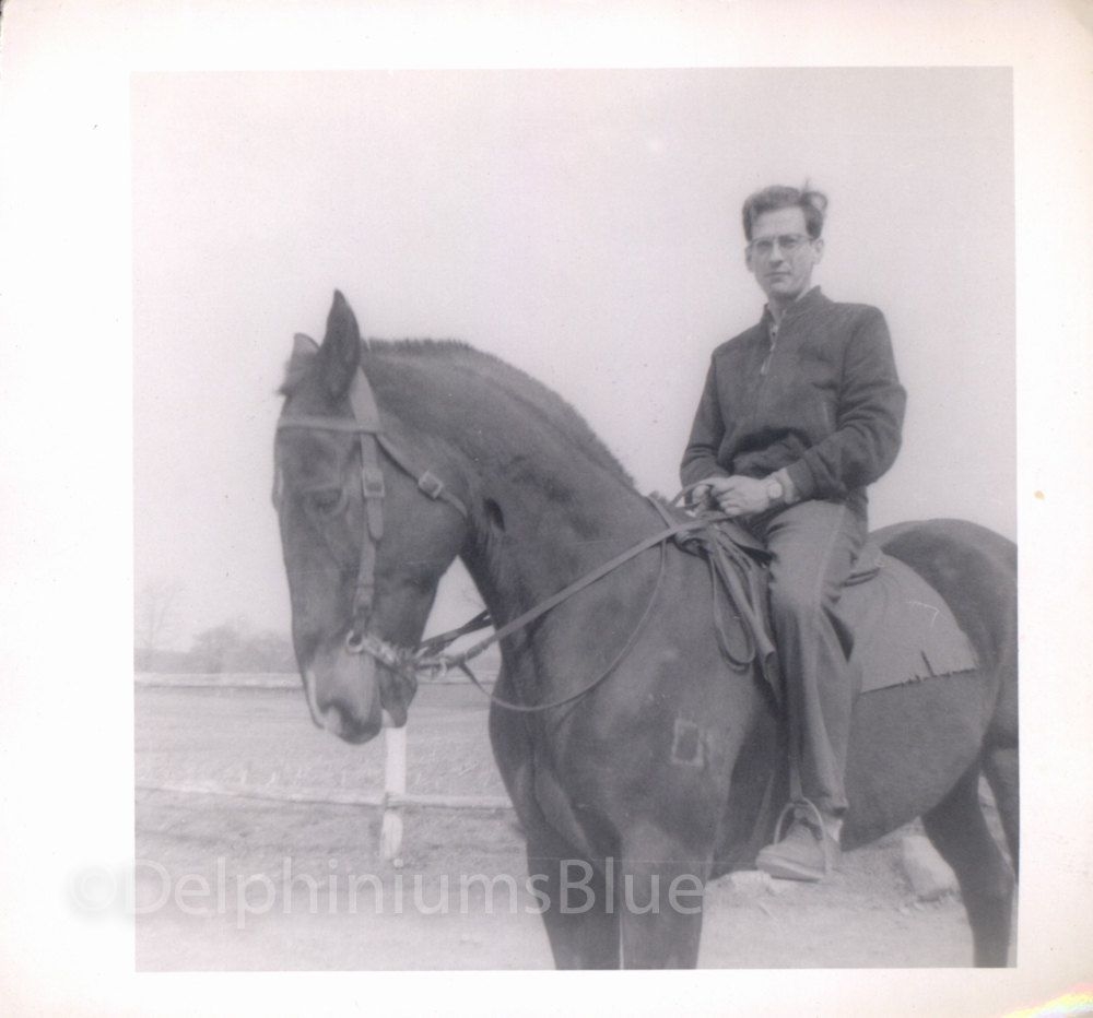 Vintage // Black & White // Photo // Man On Horse       0062 by foundphotogallery on Etsy