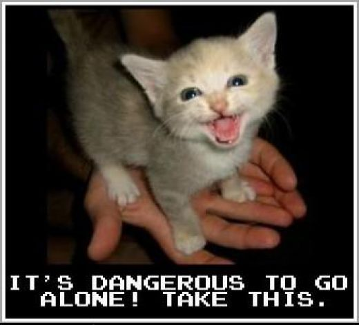 It S Dangerous To Go Alone Take This Lolcat Funny Cat Pictures Animals Cats Start your post with its dangerous to go alone. lolcat funny cat pictures animals